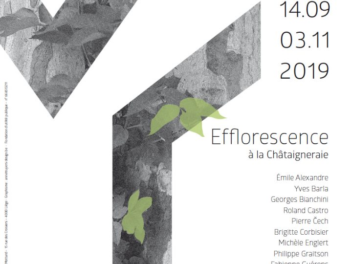 EXPOSITION – Efflorescence – Fondation Province de Liège pour l'Art et la Culture